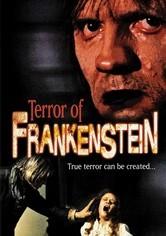 Rent Terror of Frankenstein on DVD