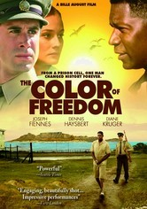 Rent The Color of Freedom on DVD