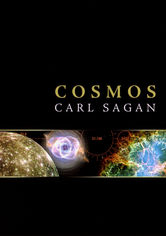 Rent Cosmos on DVD