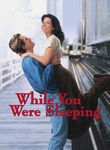 While You Were Sleeping (1995) Box Art