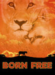 Born Free (1966) Box Art