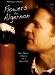 Flowers for Algernon (2000) Box Art