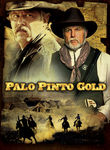 Palo Pinto Gold poster